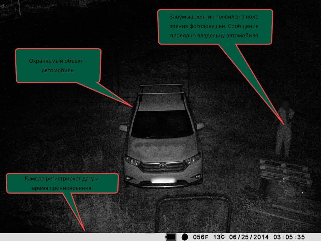 Как работает фотоловушка для охраны