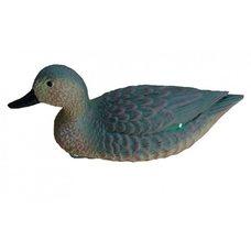 Чучело Birdland чирок утка плавающая 7355