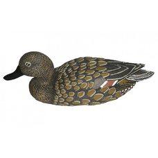 Чучело Birdland шилохвость утка плавающая 7502